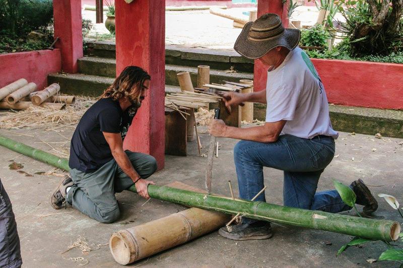 bambu22.jpg