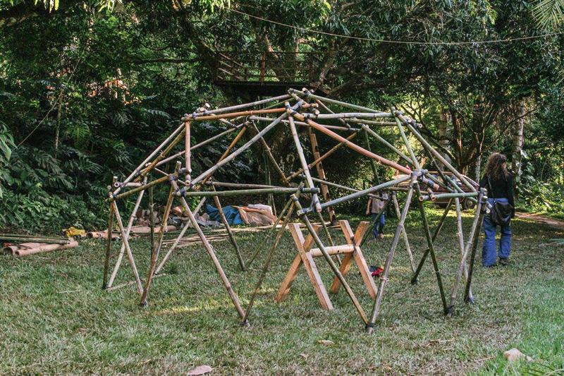 bambu6.jpg