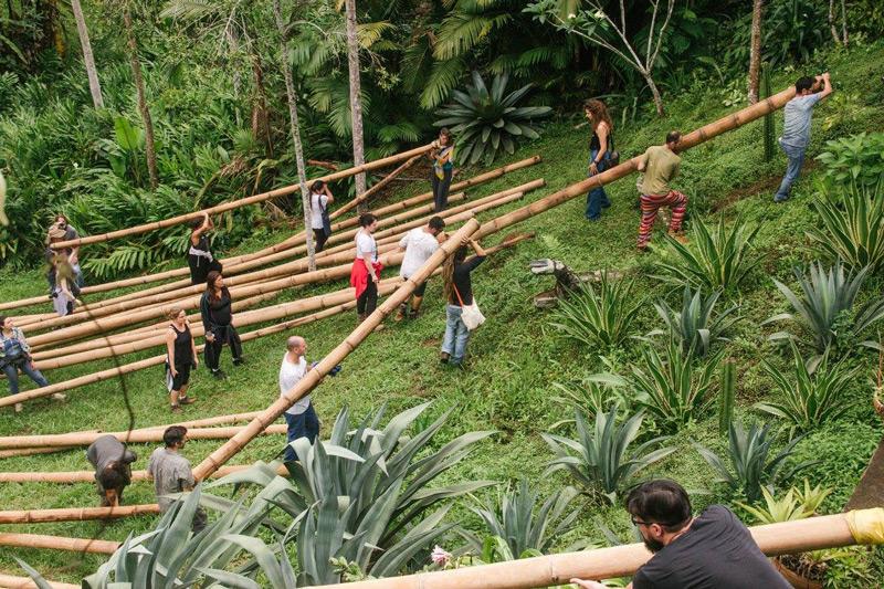 bambu14.jpg