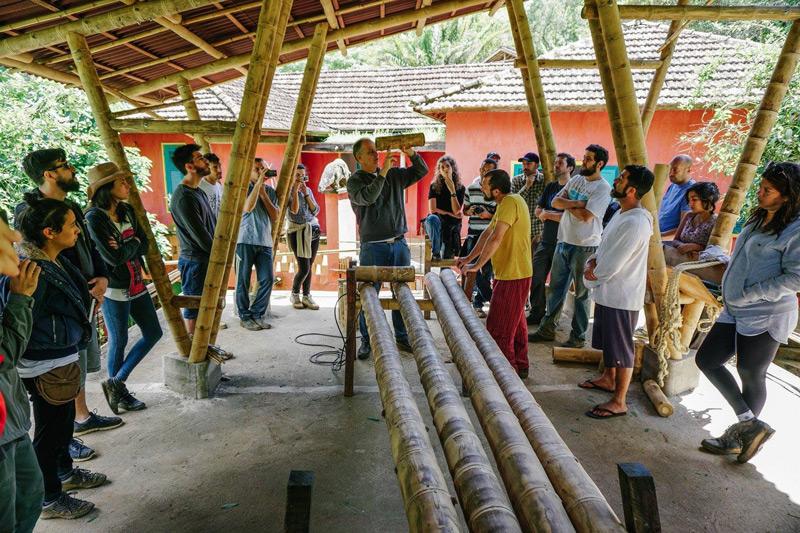 bambu18.jpg