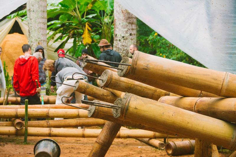bambu21.jpg