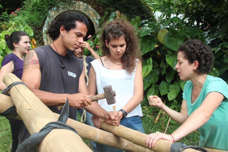 bambu24.jpg