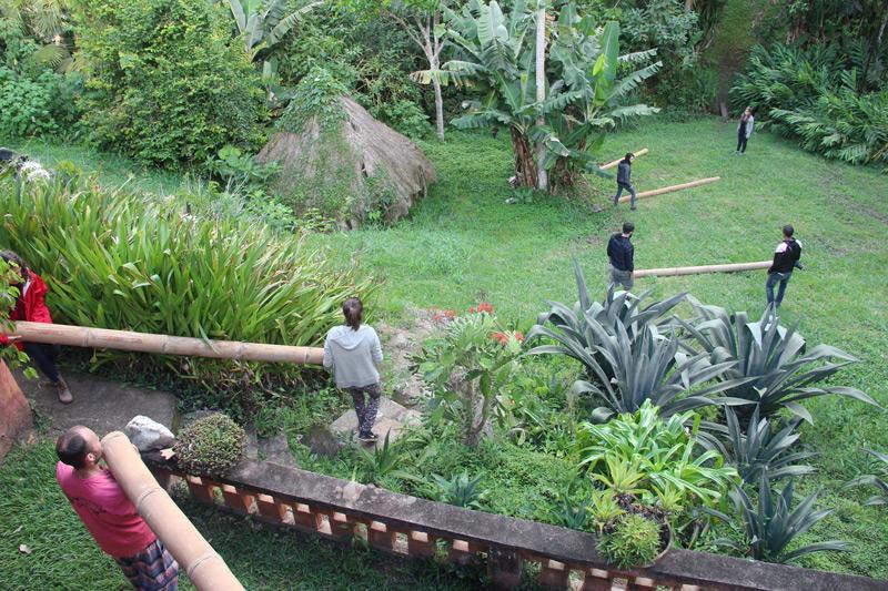 bambu26.jpg