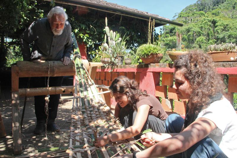 bambu28.jpg