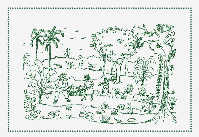 reforest_back+3.jpg