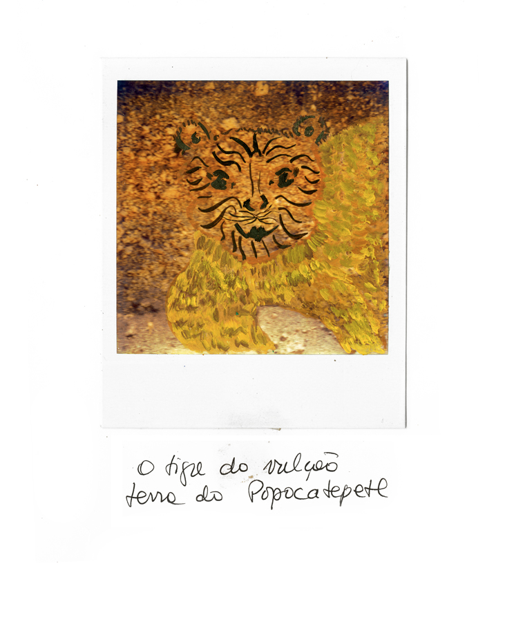 rose_polaroid13.jpg