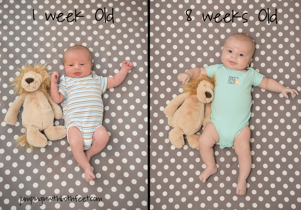 Theo at 1 week vs Theo last week at 8 weeks.