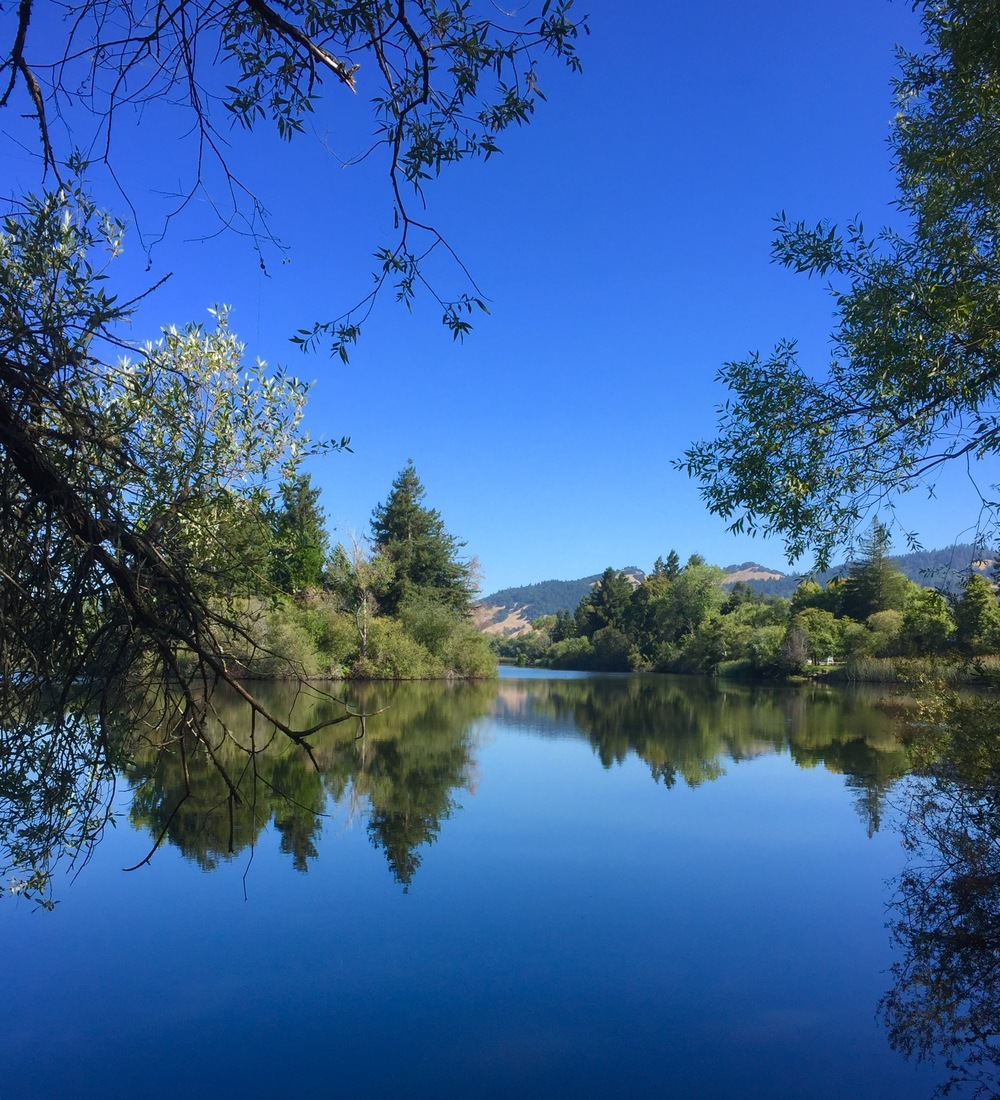 Spring Lake, Santa Rosa, CA Summer 2016