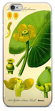 Yellow Pond Lily iPhone Case