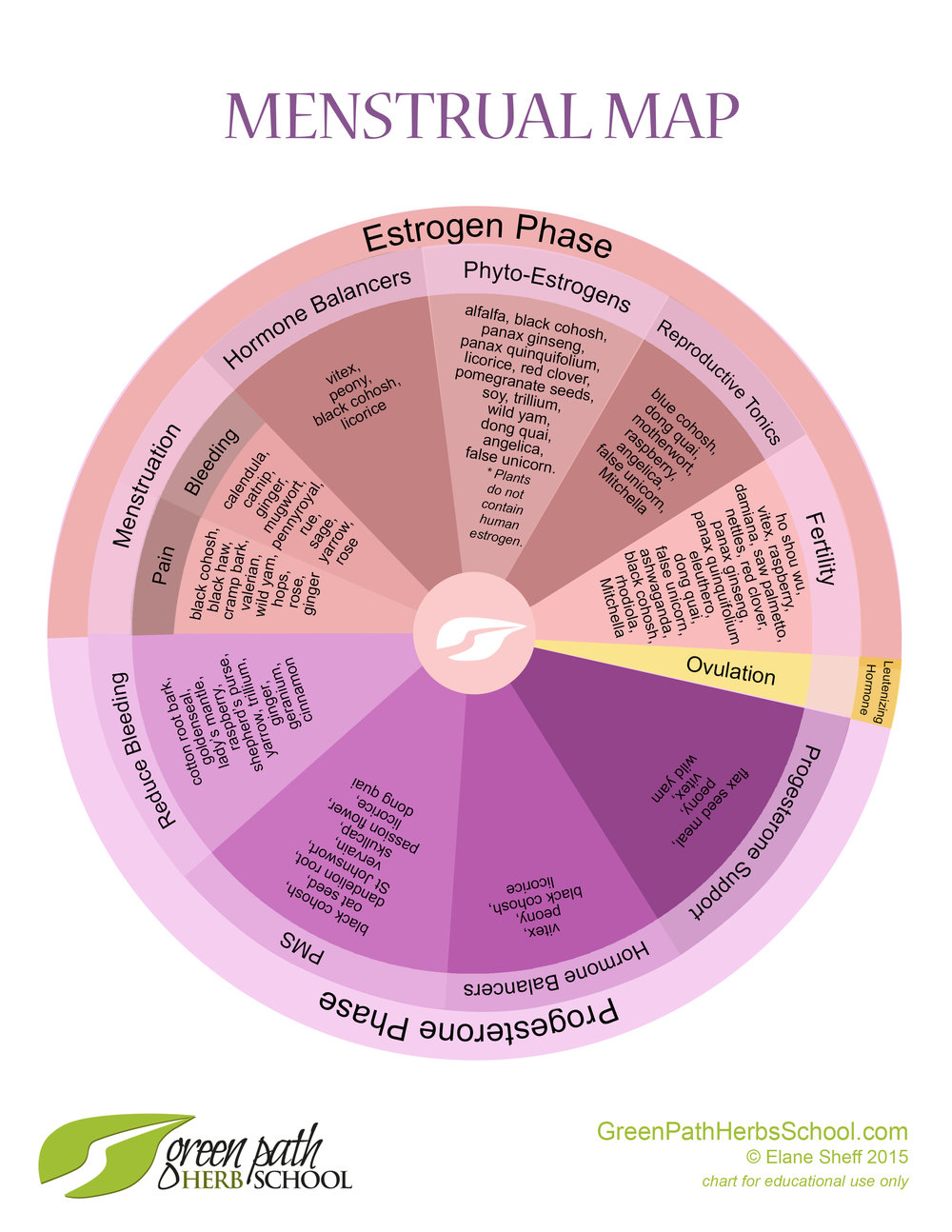 menstrual map (1).jpg