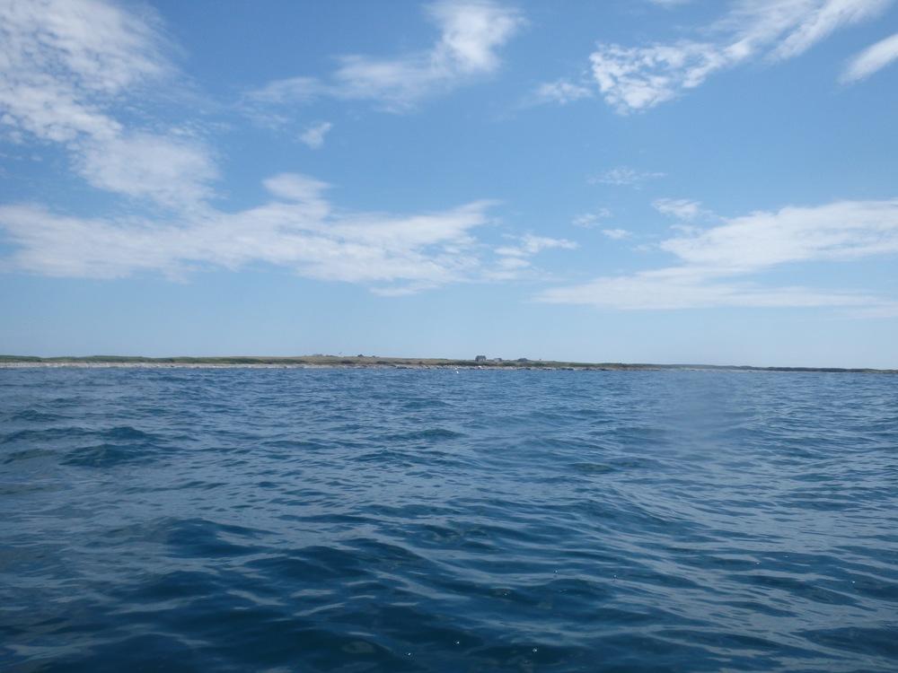 Large Green Island