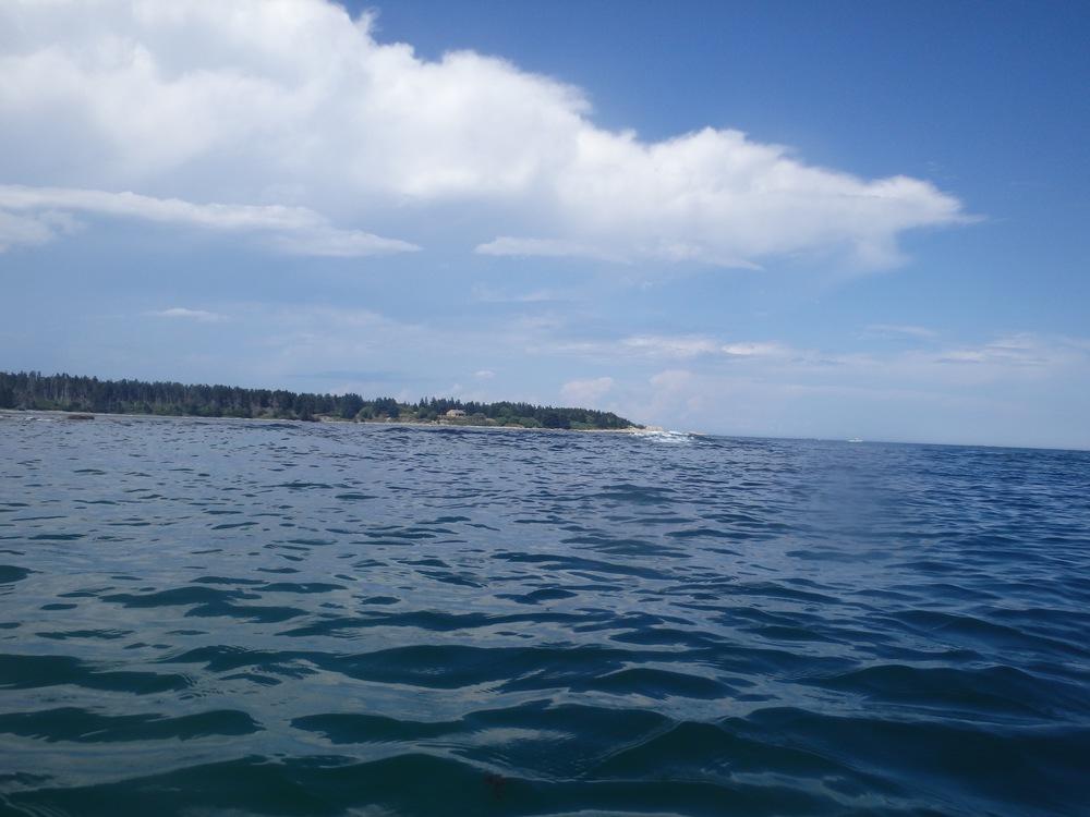 Condon Cove