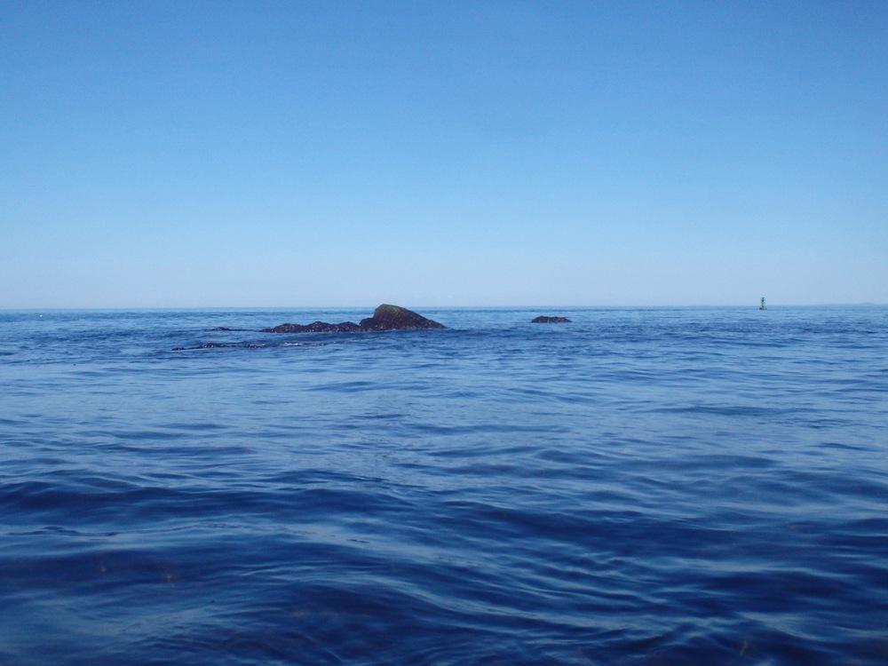 Whaleback Ledge