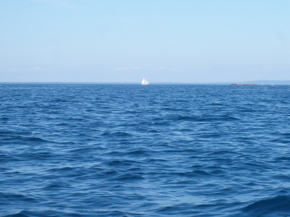 Distant sailboat