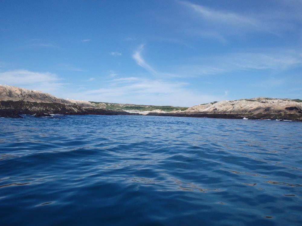 Back Cove