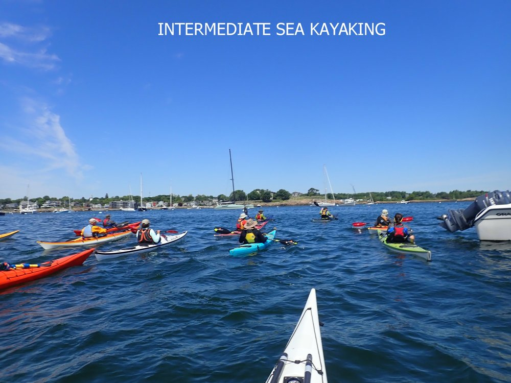 Intermediate Sea Kayaking