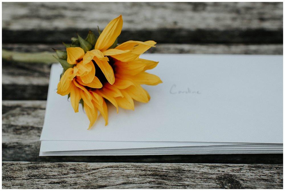 BIRMINGHAM BOTANICAL GARDENS | Proposal | Atlanta Wedding Photographer | Madalynn Young Photography_0001.jpg