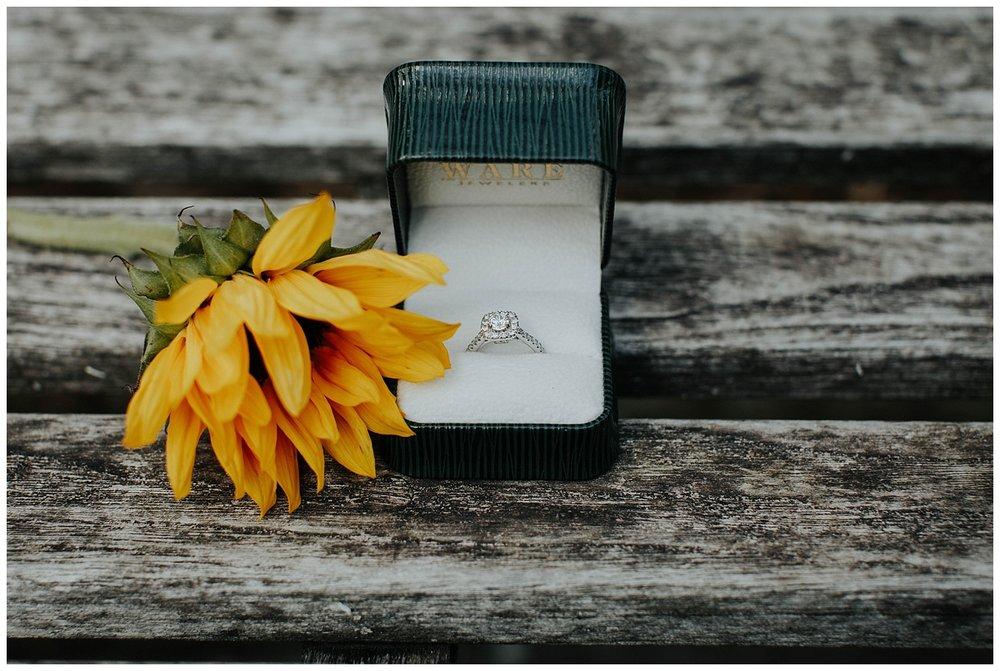 BIRMINGHAM BOTANICAL GARDENS | Proposal | Atlanta Wedding Photographer | Madalynn Young Photography_0000.jpg