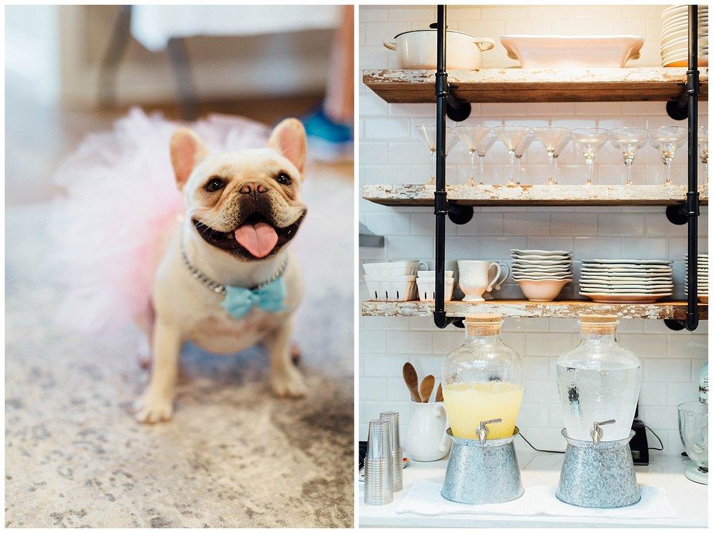 TUPELO, MISSISSIPPI GENDER REVEAL PARTY | Birmingham + Atlanta Wedding Photographer | Madalynn Young Photography_0348.jpg