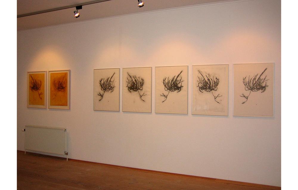 Inge Nørgaard, 2007 ,Art Centre Silkeborg Bad, Silkeborg, Denmark, Witchbroom , Collagraph