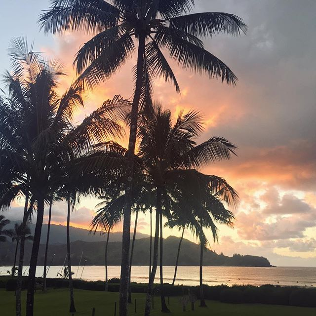 Some days this view is just sexy sexy. Dark palm trees against a pink and orange sunset. #Hanalei #kauai #magichour