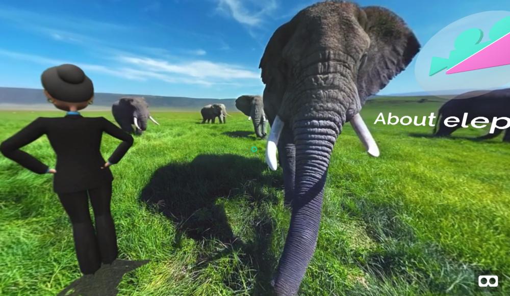 elephants in VR
