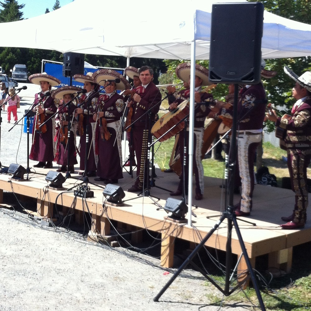Coupeville Arts & Crafts Festival 2014