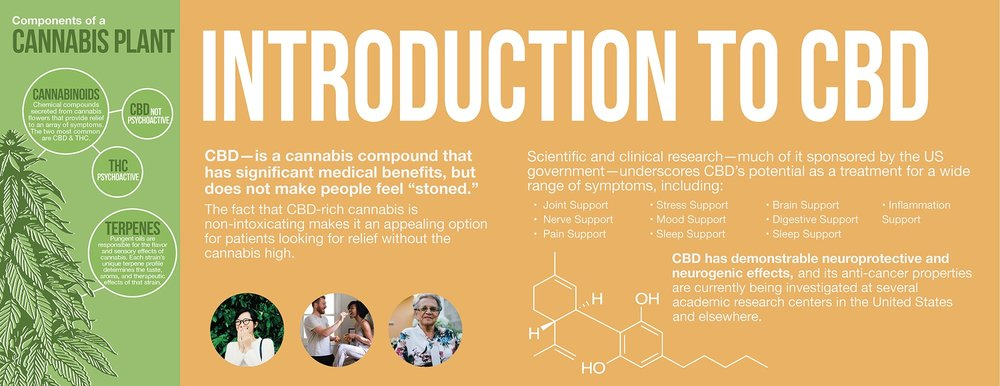 Intro to CBD infographic.jpg