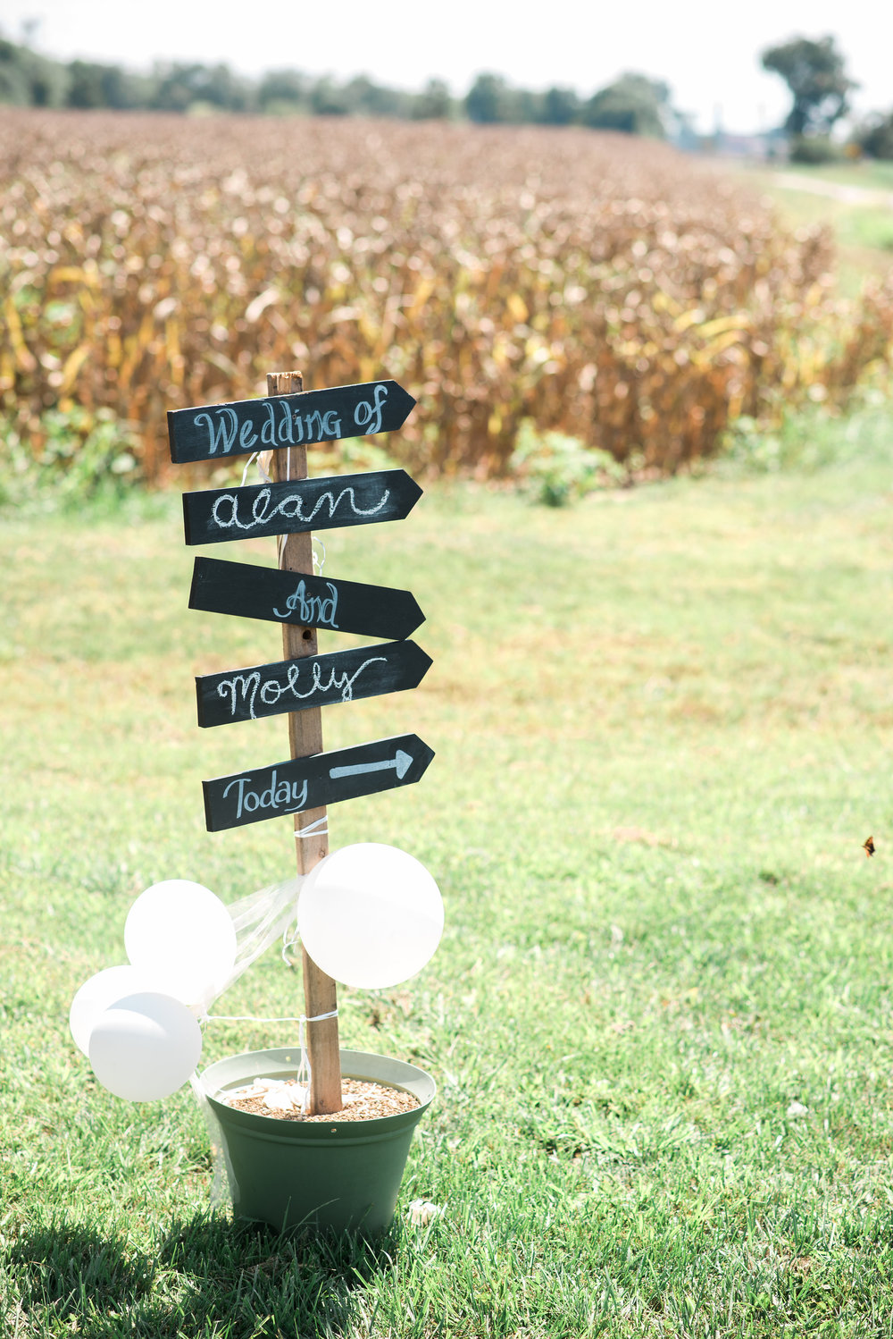The_Pour_Vineyard_Wedding