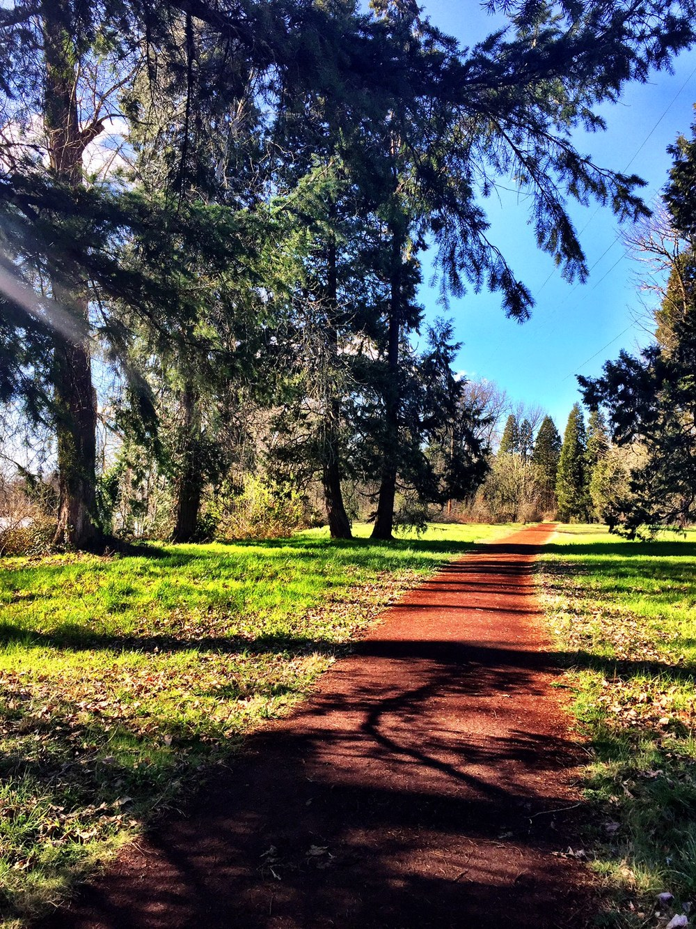 pre's trail .jpg