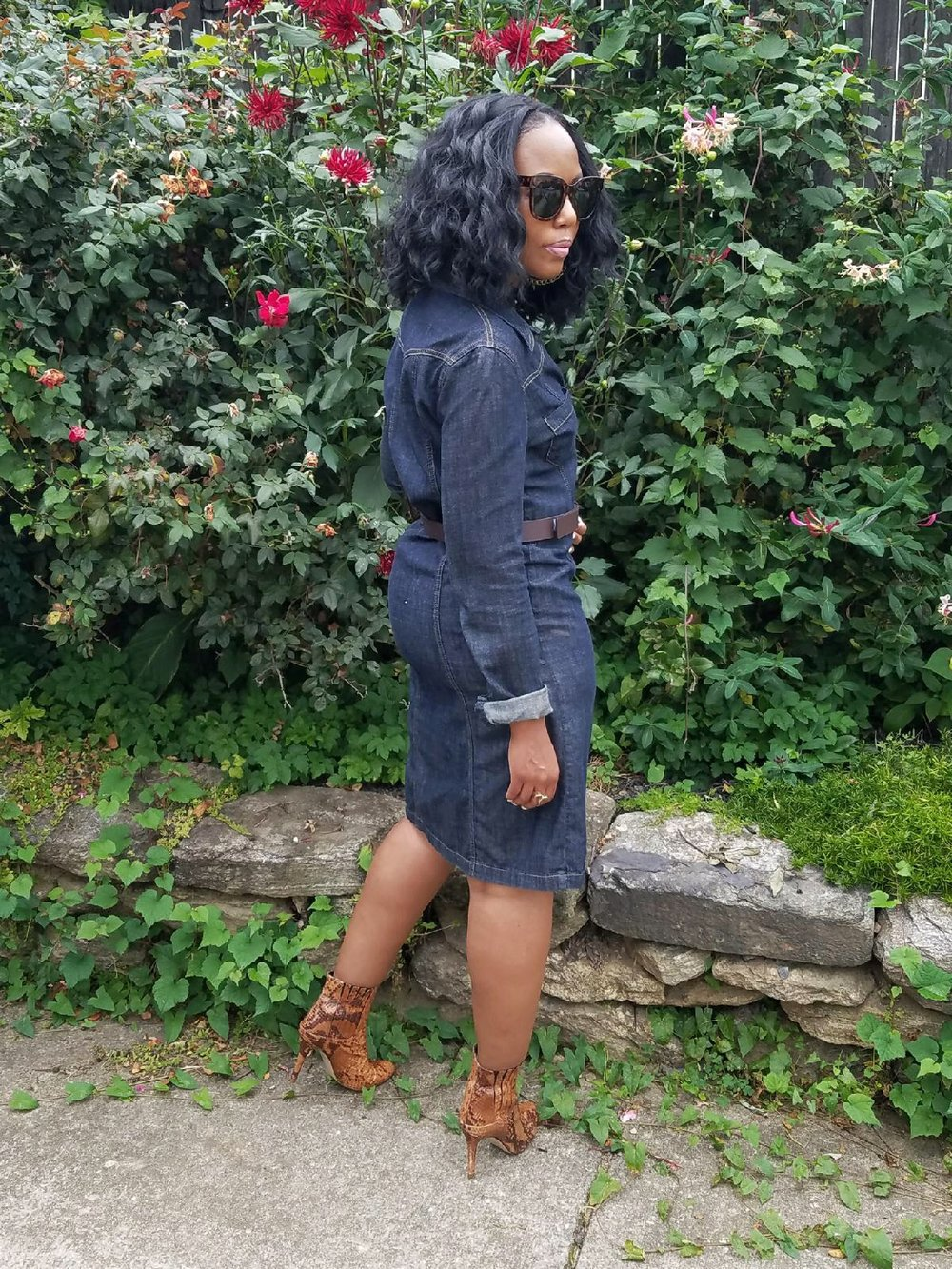 All-About-The-Denim-Dress