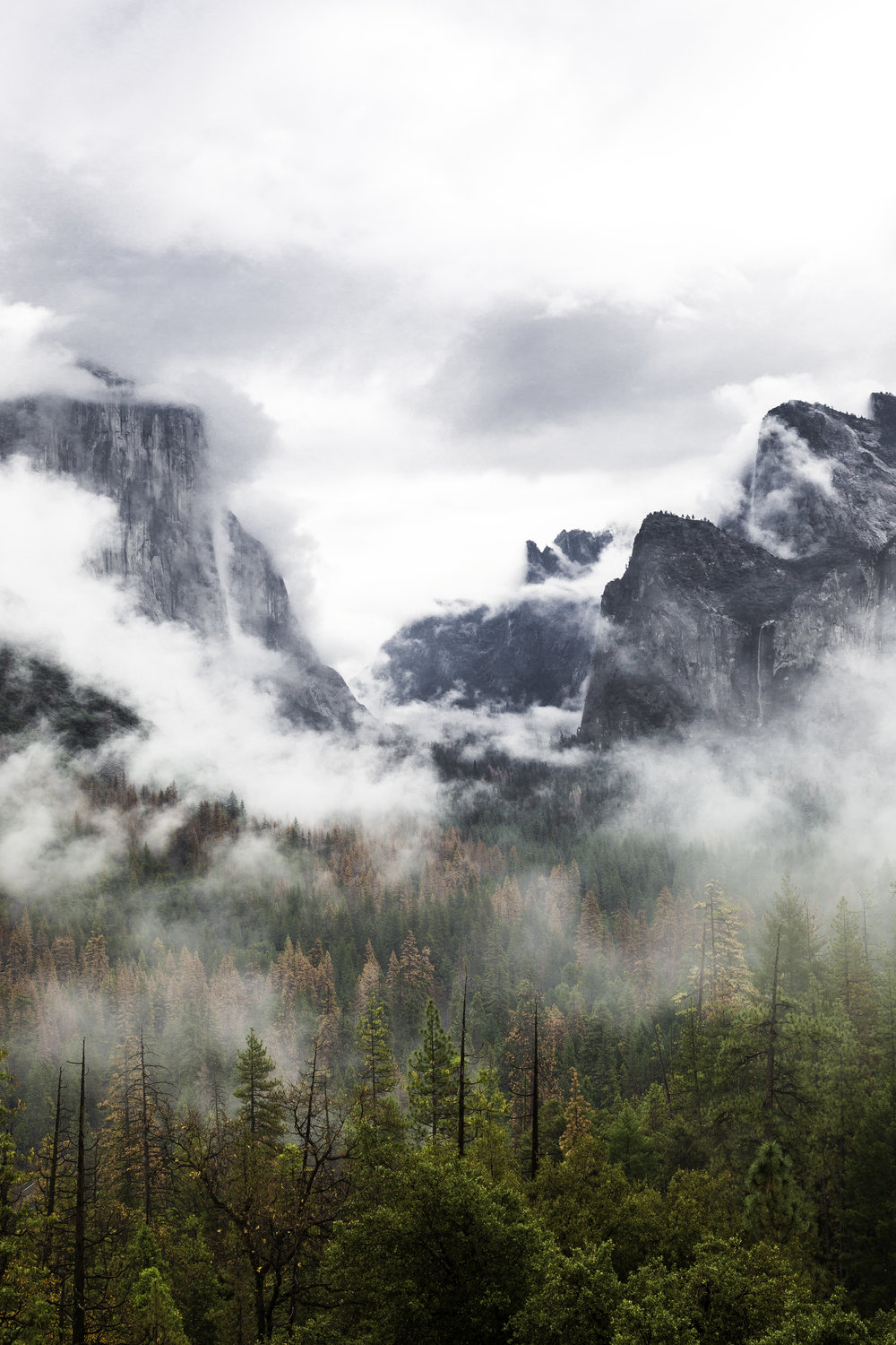 Moody morning in Yosemite from the Tunnel View
