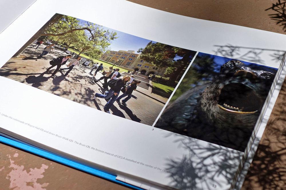 2_Visions_of_UCLA.jpg