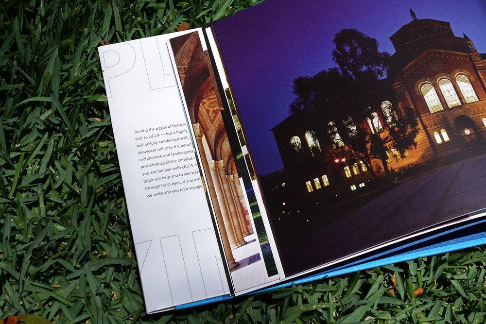 5_Visions_of_UCLA.jpg
