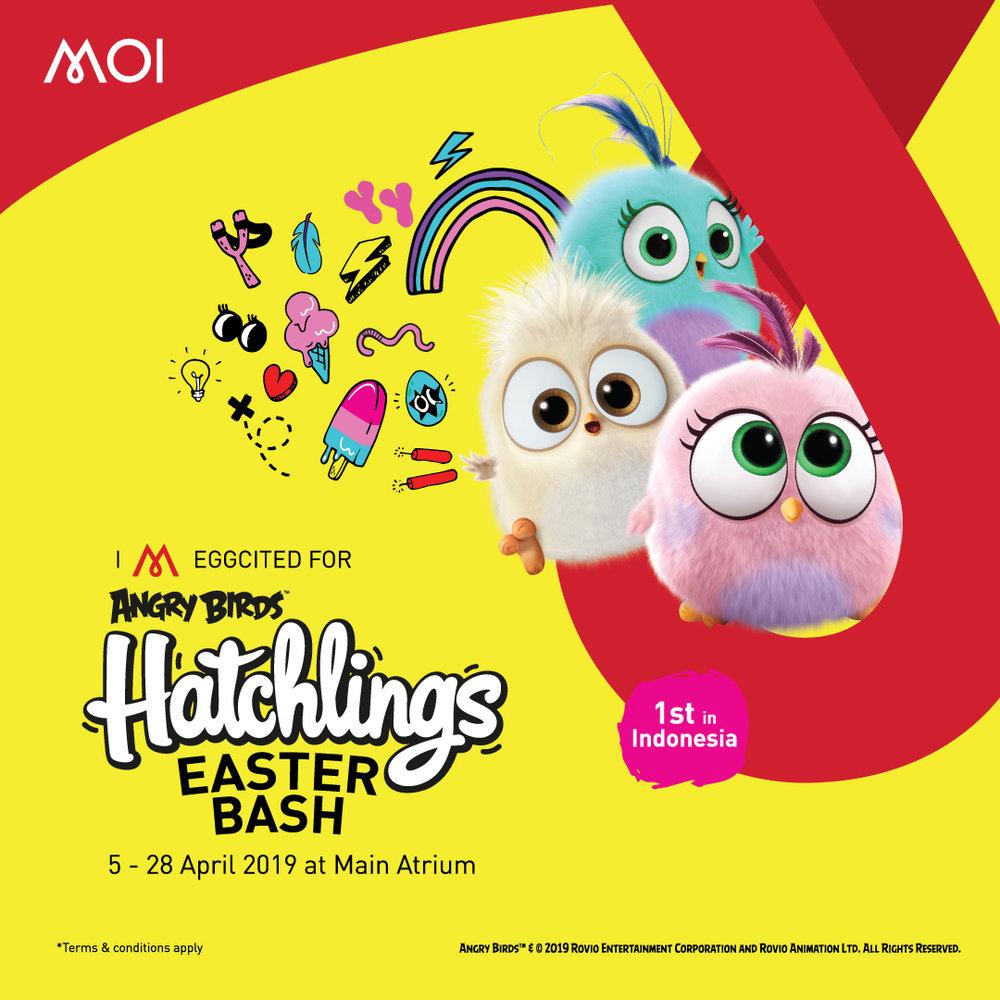 Hatchling MOI