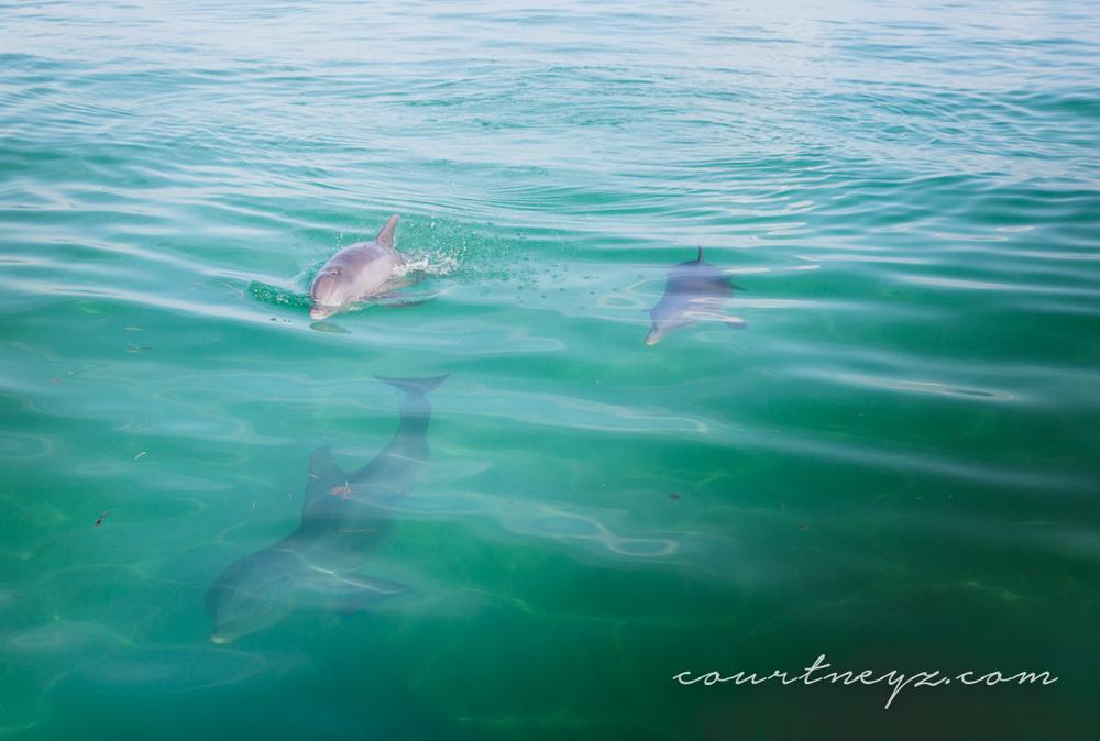 15.08.22_Florida Keys_10on10-8.jpg