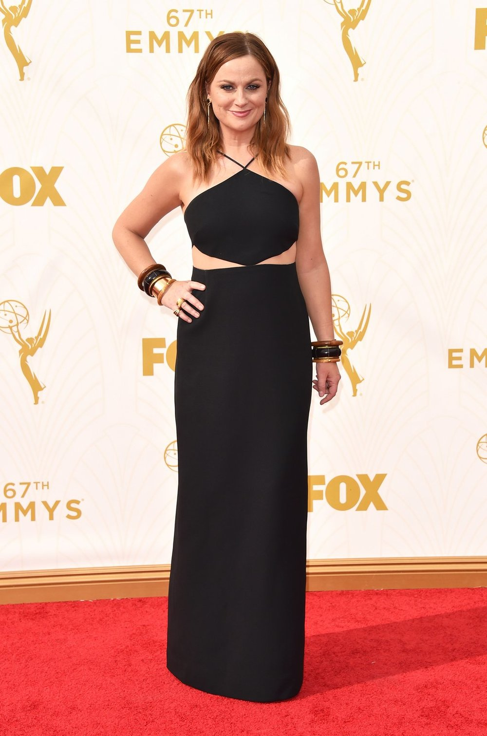 amy-poehler-emmys-red-carpet-2015.jpg
