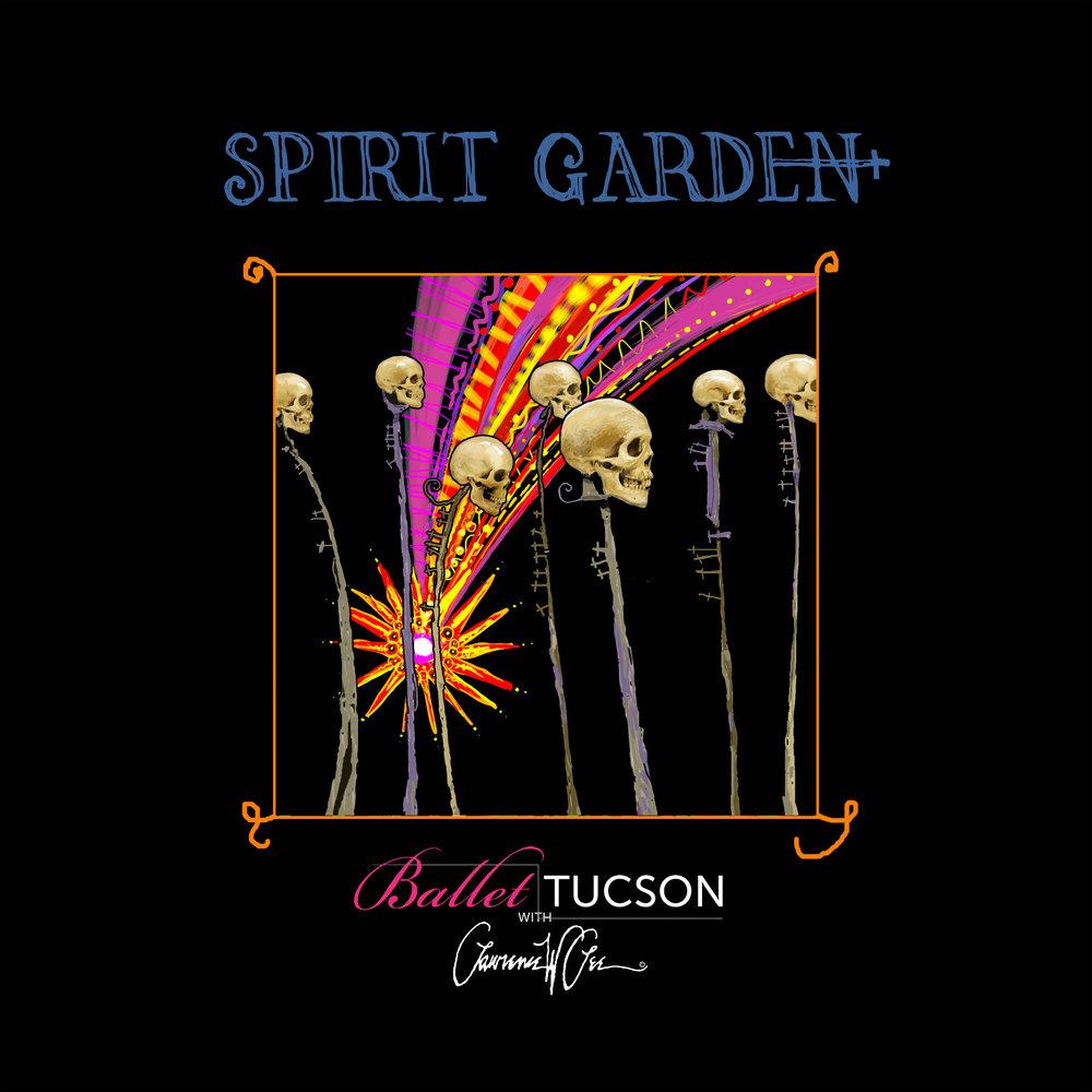 Spirit Garden Astera Parade 2.jpg
