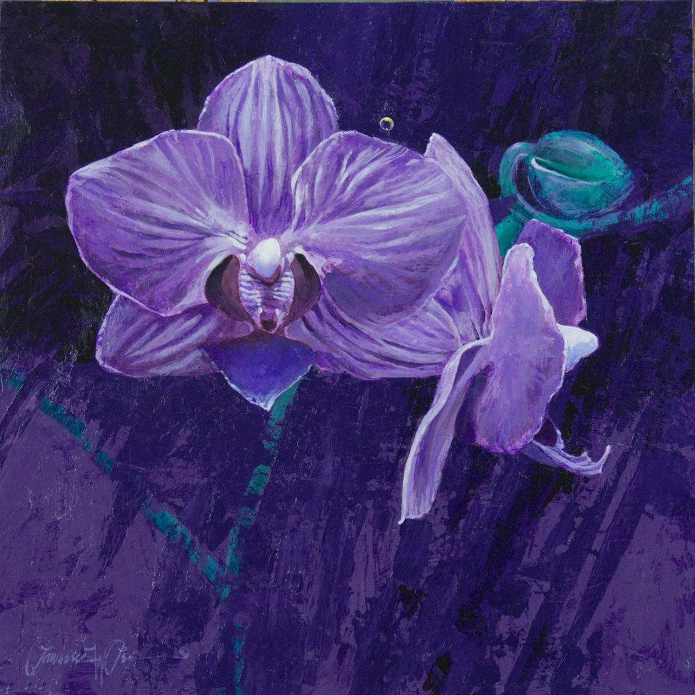 Violet Fancy-1.jpg