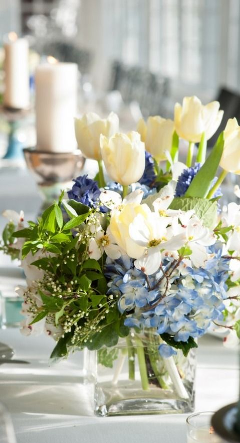 d71bcaa40bb70b947e46af895faea762--types-of-flowers-blue-flowers.jpg