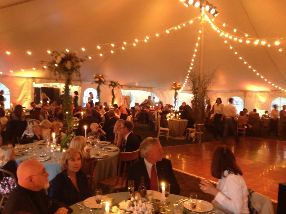 wedding-white-tent-party-7.jpg