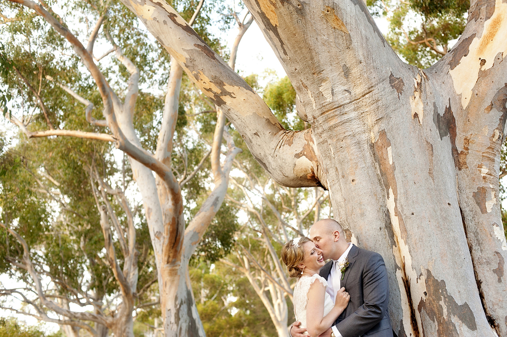 perth wedding couple with gum trees perth