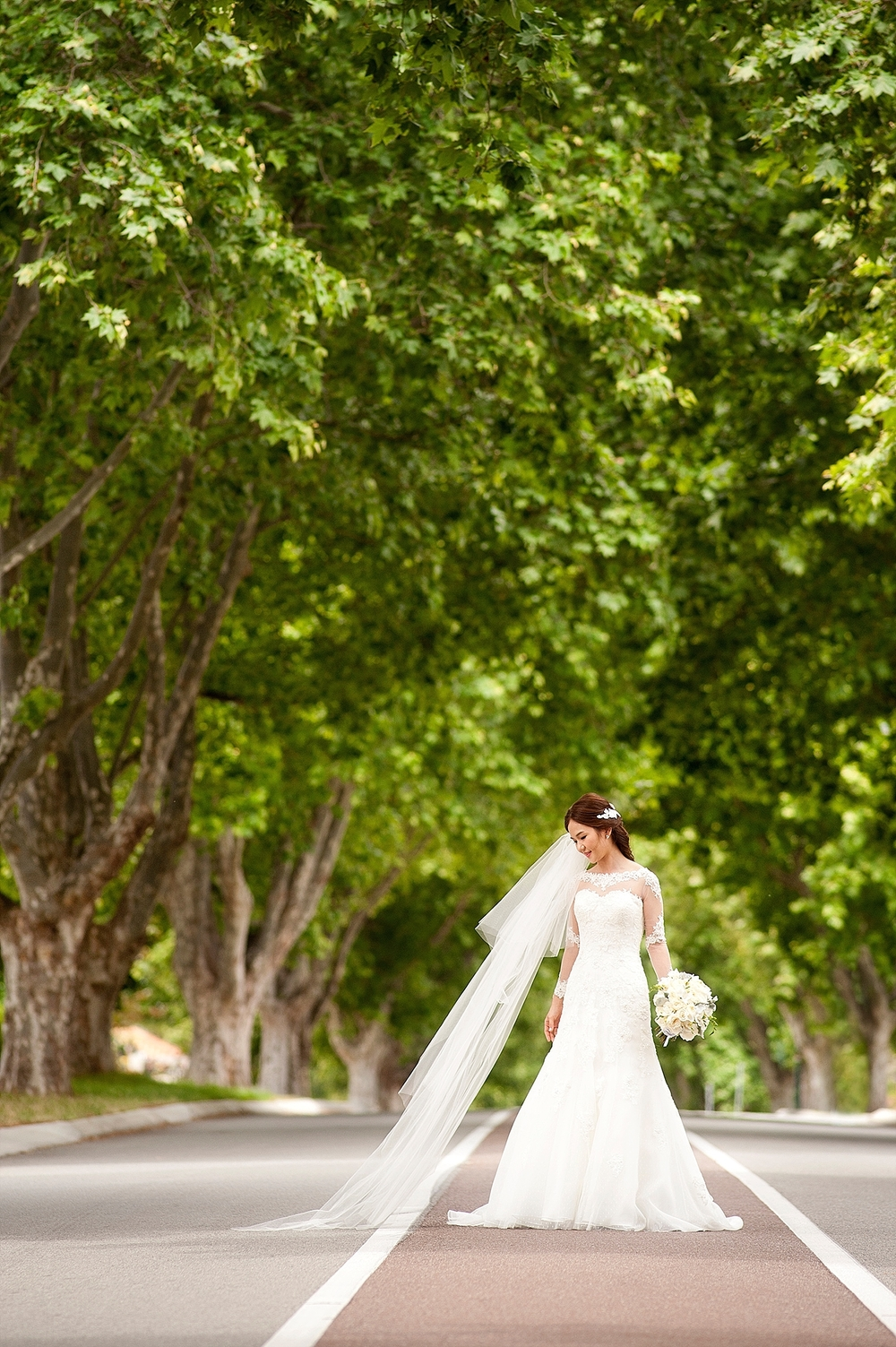 wedding photos in applecross london plane trees across road