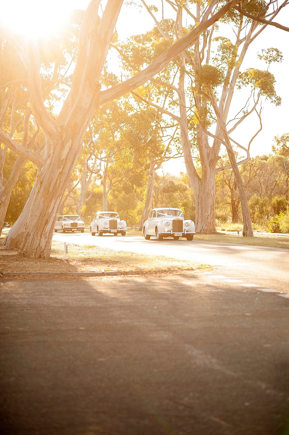 48_fleet of vintage cars wedding perth.jpg