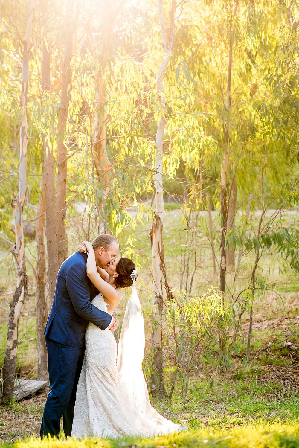 59_wedding couple photos in gum trees perth .jpg