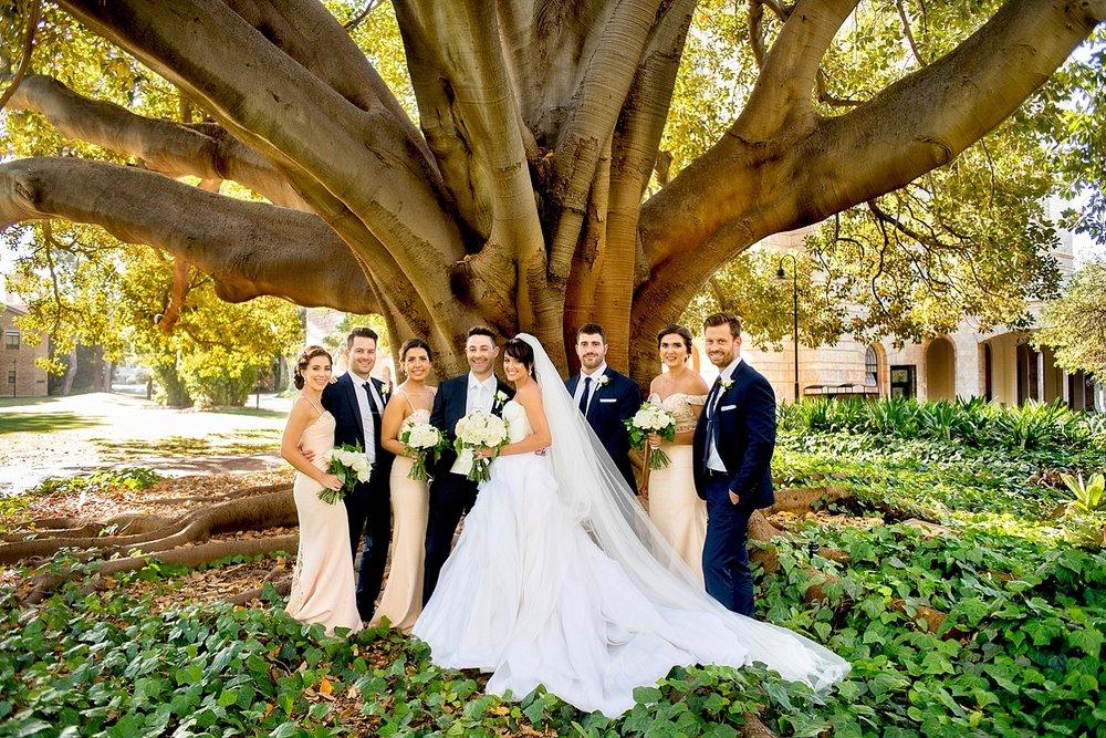 53_morton bay fig tree uwa wedding perth.jpg