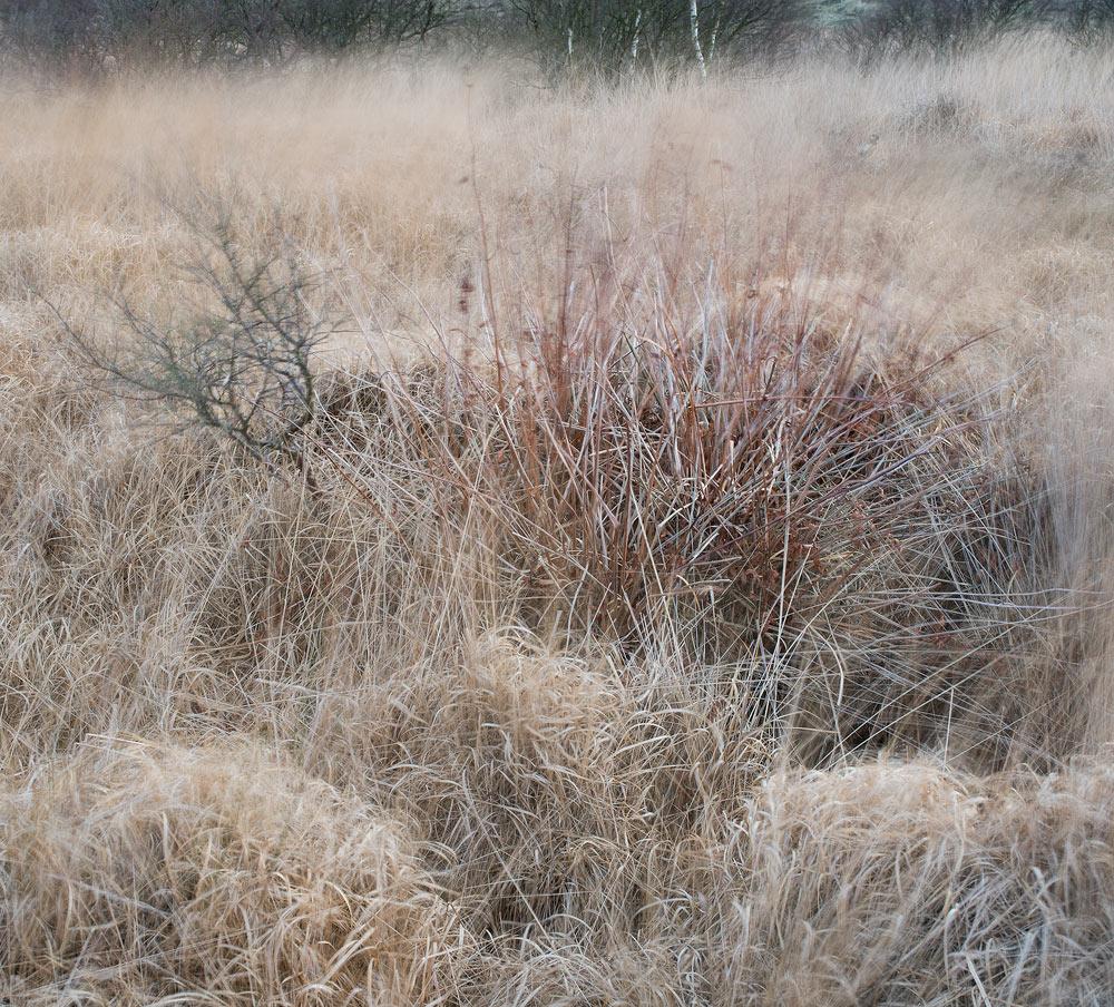 winterton-abs-8.jpg
