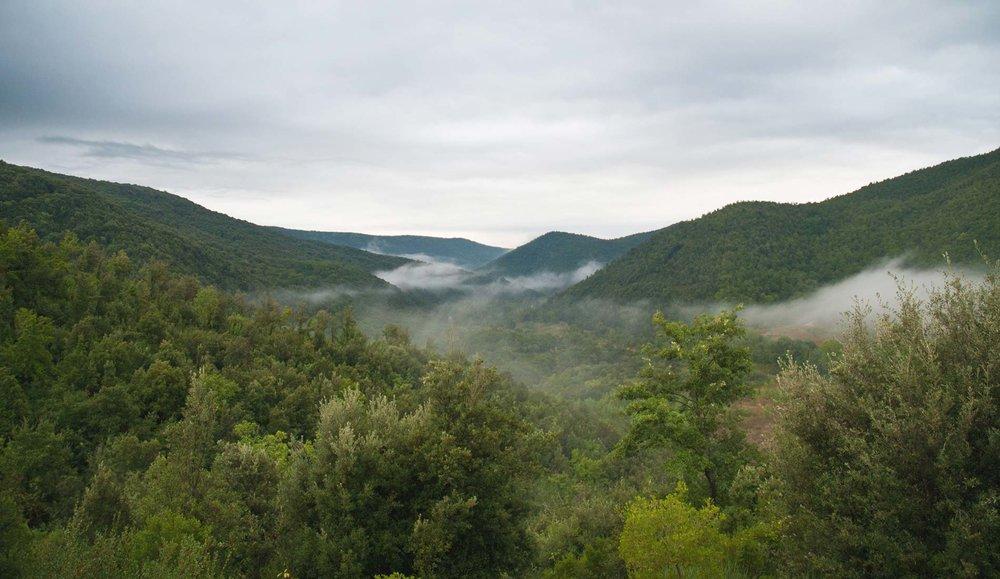 eremito-paesaggio-mare-verde.jpg