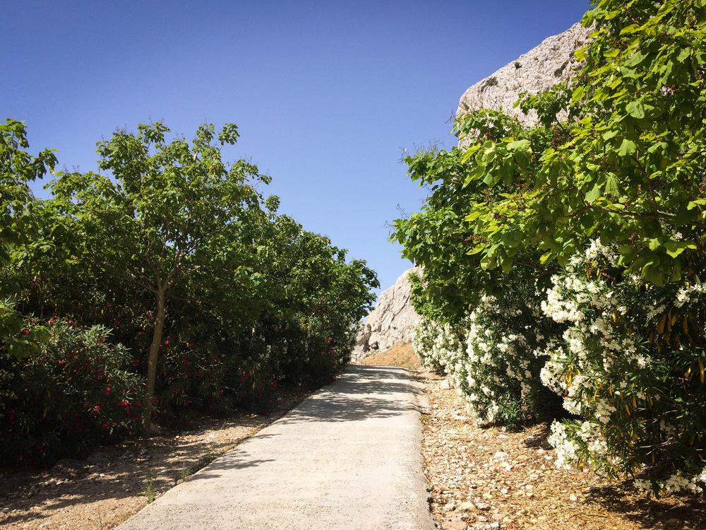 Zafarraya Andalusia7.JPG