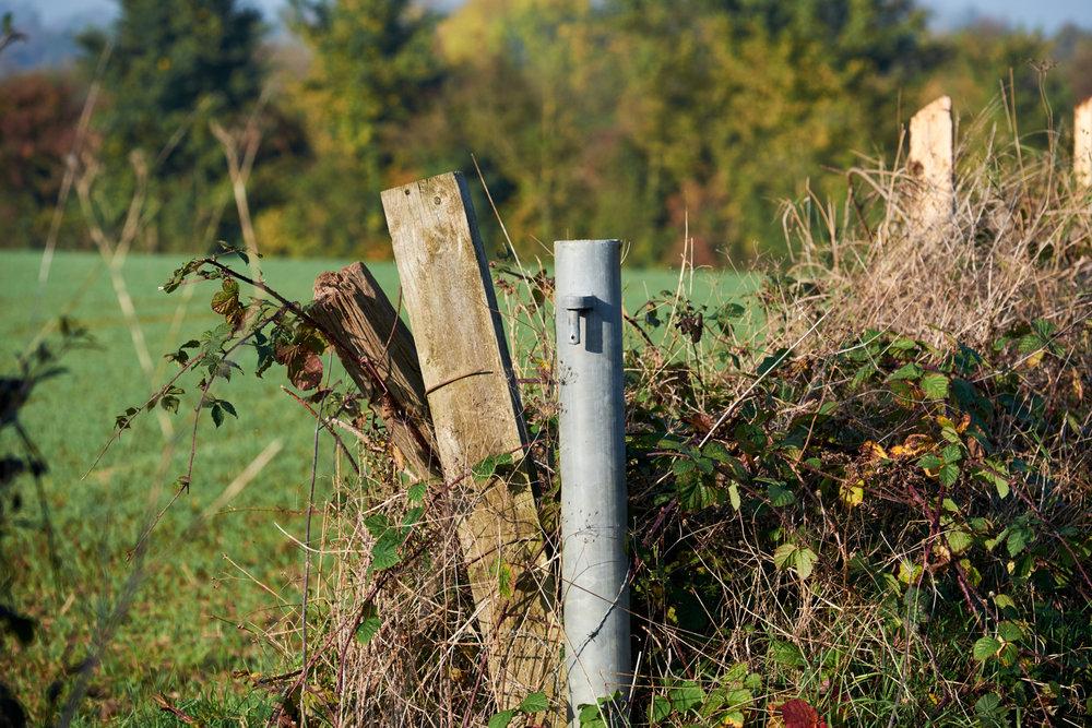 Fujifilm 50-140mm f2.8 lens www.thefxworks.co.uk11.JPG